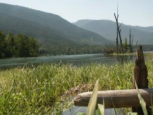 Scenic Upper Slocan River
